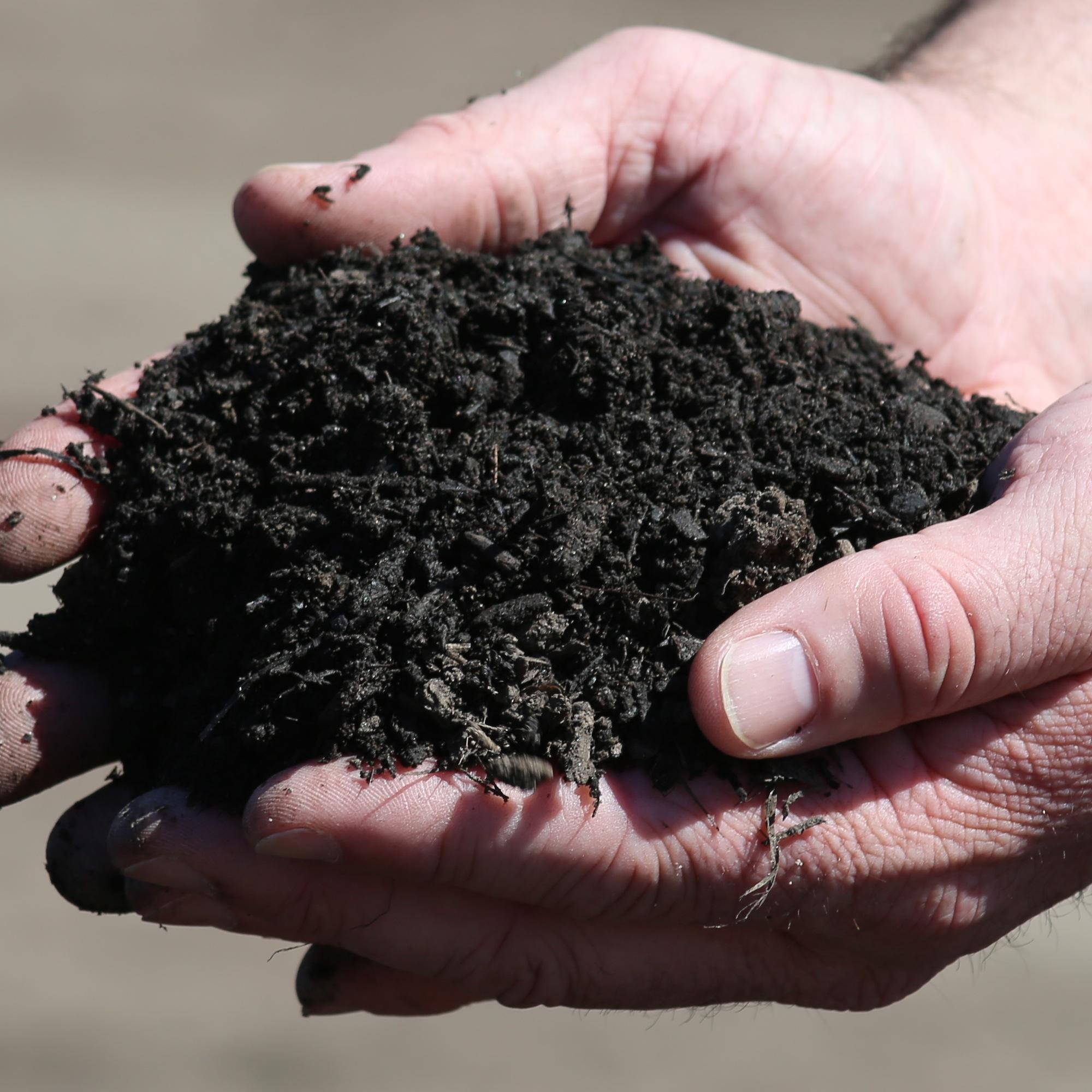 Soils and Soil Mixes
